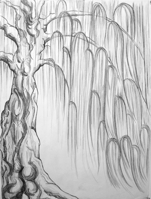 Mary Ann and the Tree By the River - Tree Study